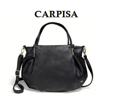 Elegant Carpisa bag for work