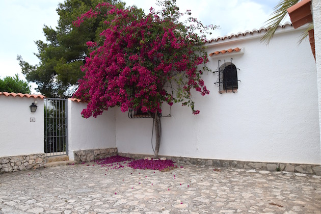 beautiful house in Spain with flowers